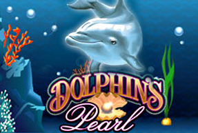 Dolphin's Perl